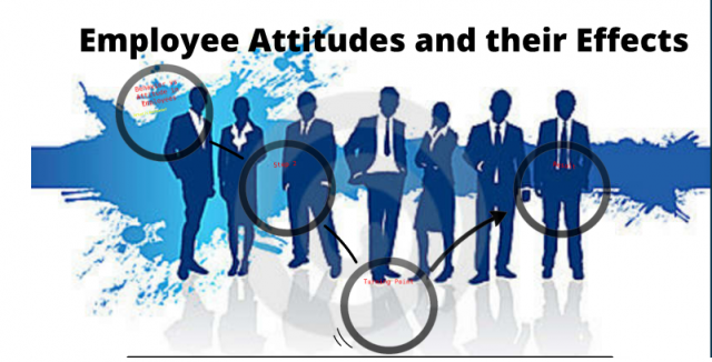 Employee attitudes affect customer service